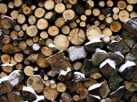 Das Holz für den Winter ist geschlagen