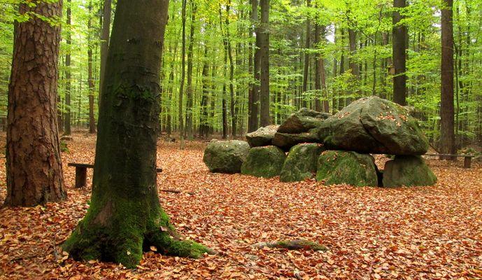 das Hünengrab im Wald ...