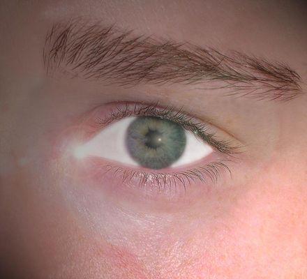 Das irdische Auge