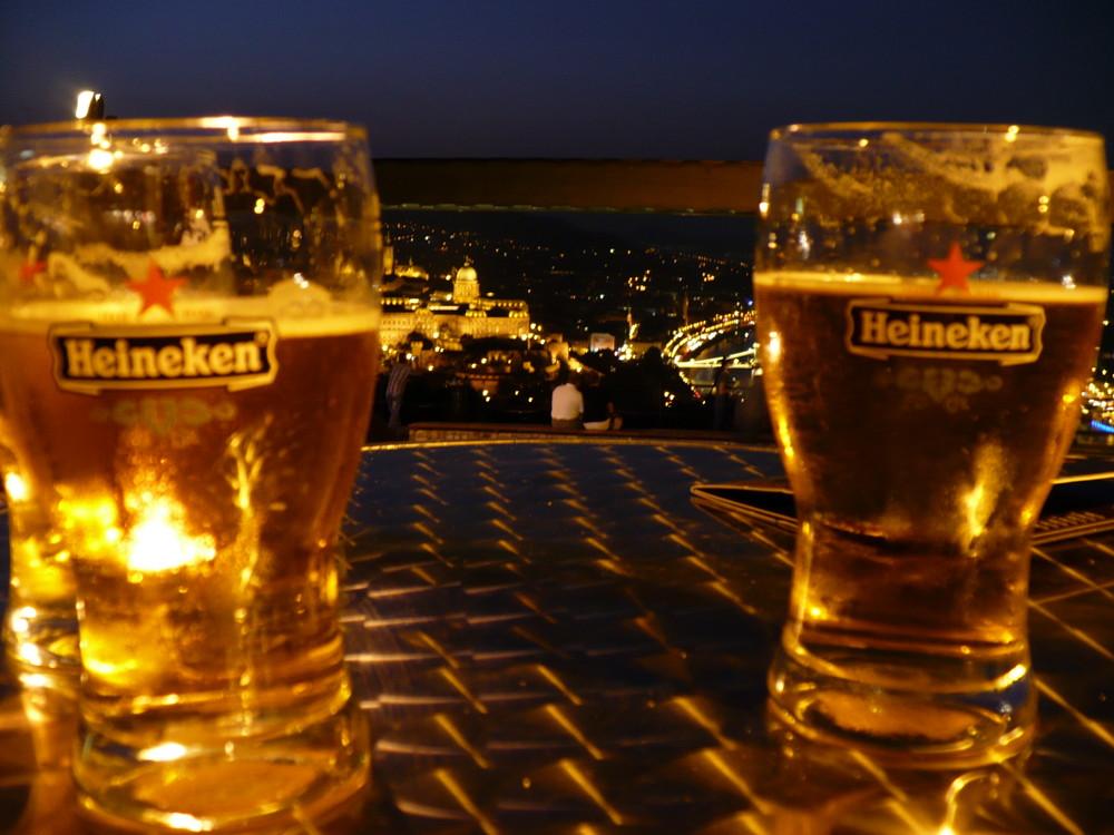 DAS ist der Genießerblick auf Budapest!