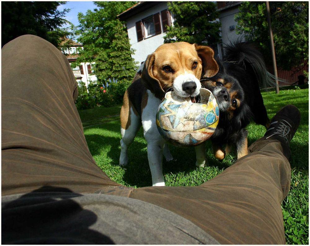 das ist mein ball (reload)
