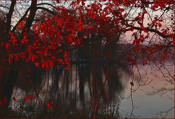Das kann nur der Herbst...