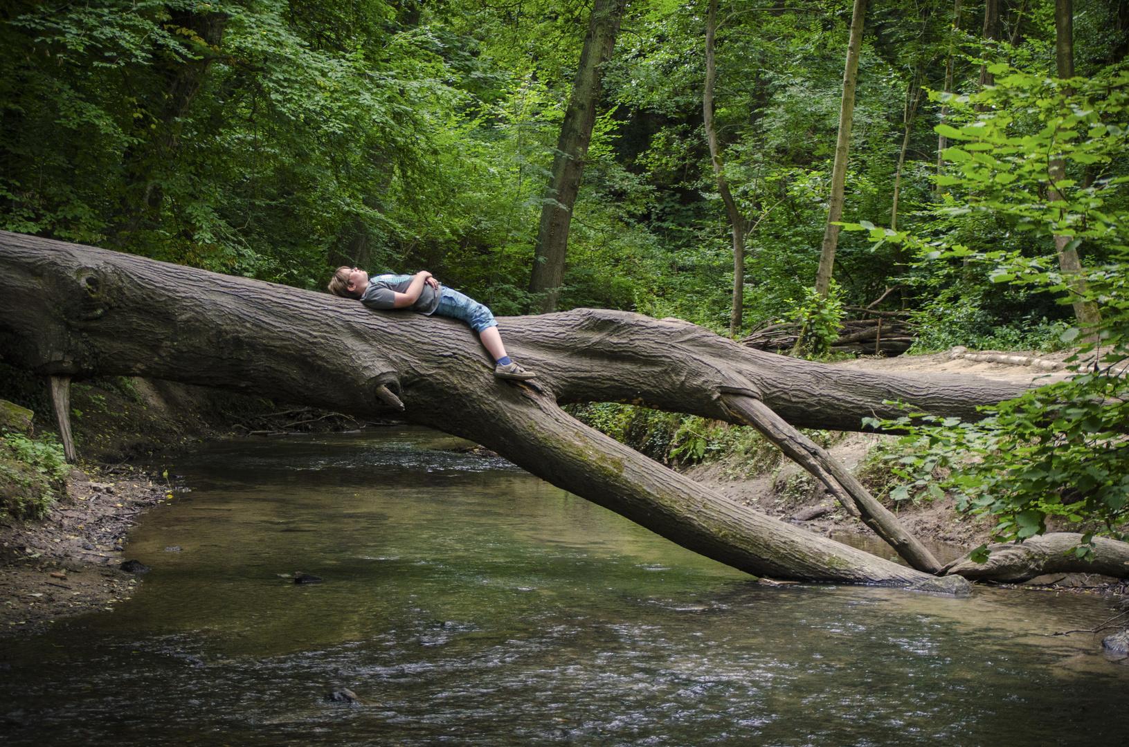 Das Kind im Arm der Natur