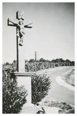Das Kreuz im Weinberg