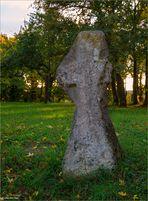 Das Kreuz vom Walbecker Domberg - 39356 Walbeck