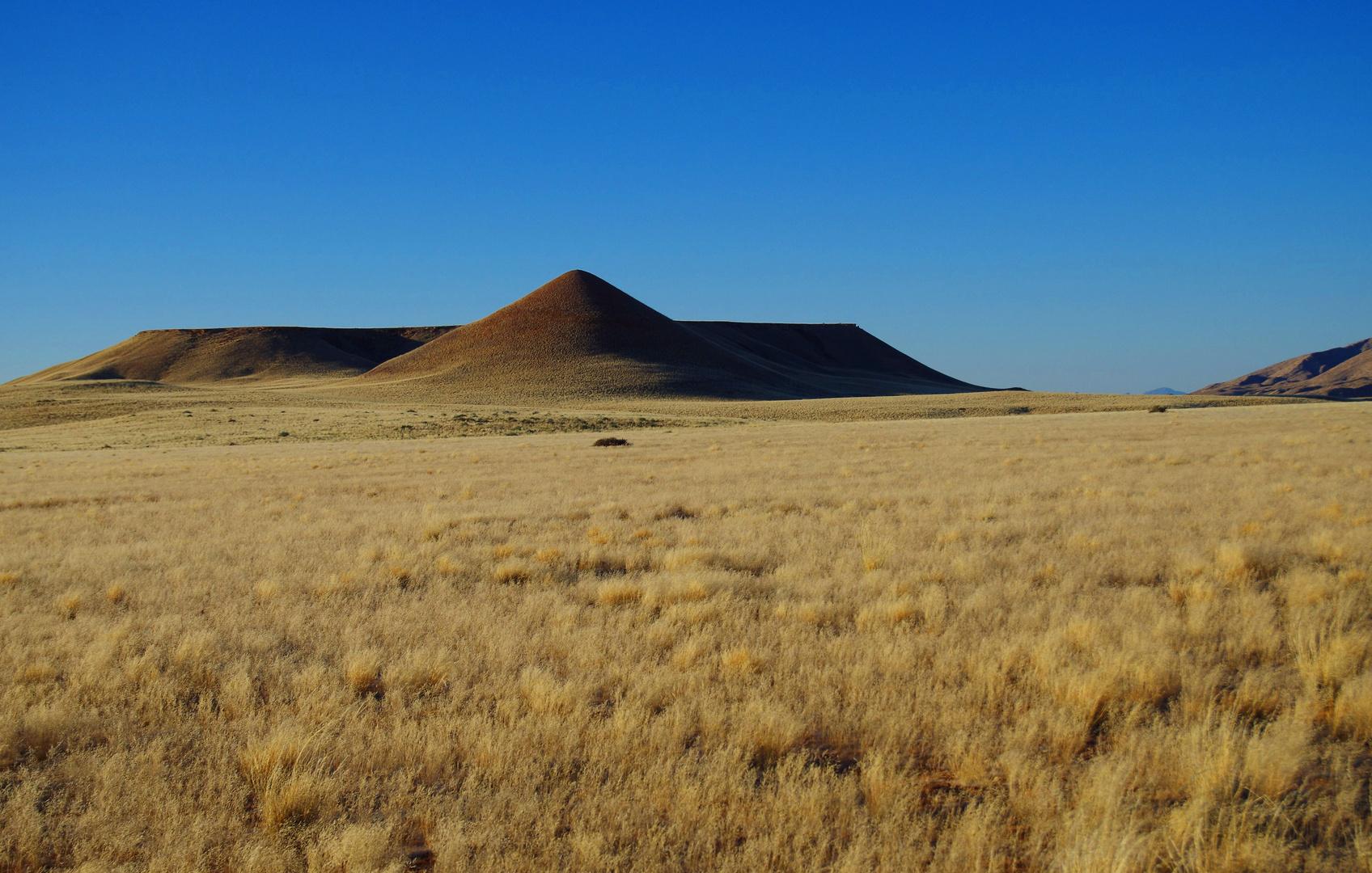 Das Land des Bushman