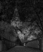 Das Laufer Wenzelschloss bei Nacht 2