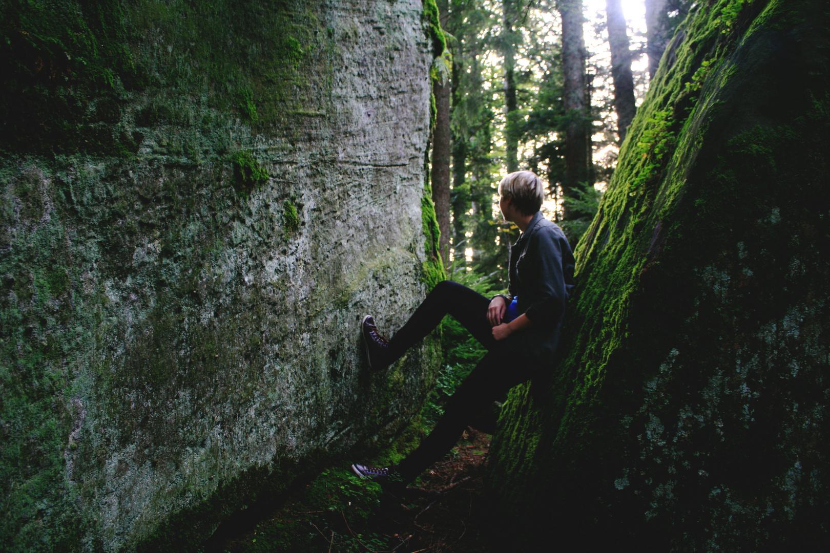 Das Lauschen des Waldes