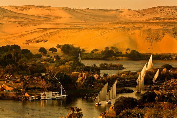 Das Leben am Nil (18)