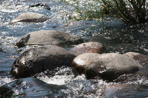Das Leben ist ein wilder, steiniger Fluß