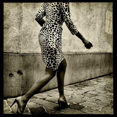 das Leopardenweibchen .