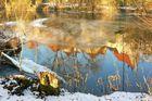 Das letzte Eis auf der Enz bei Besigheim
