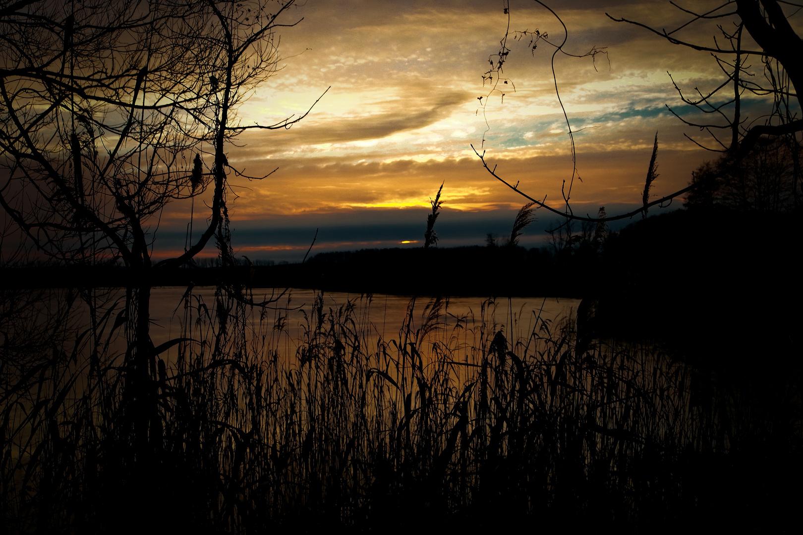 Das letzte Licht an einem Teich