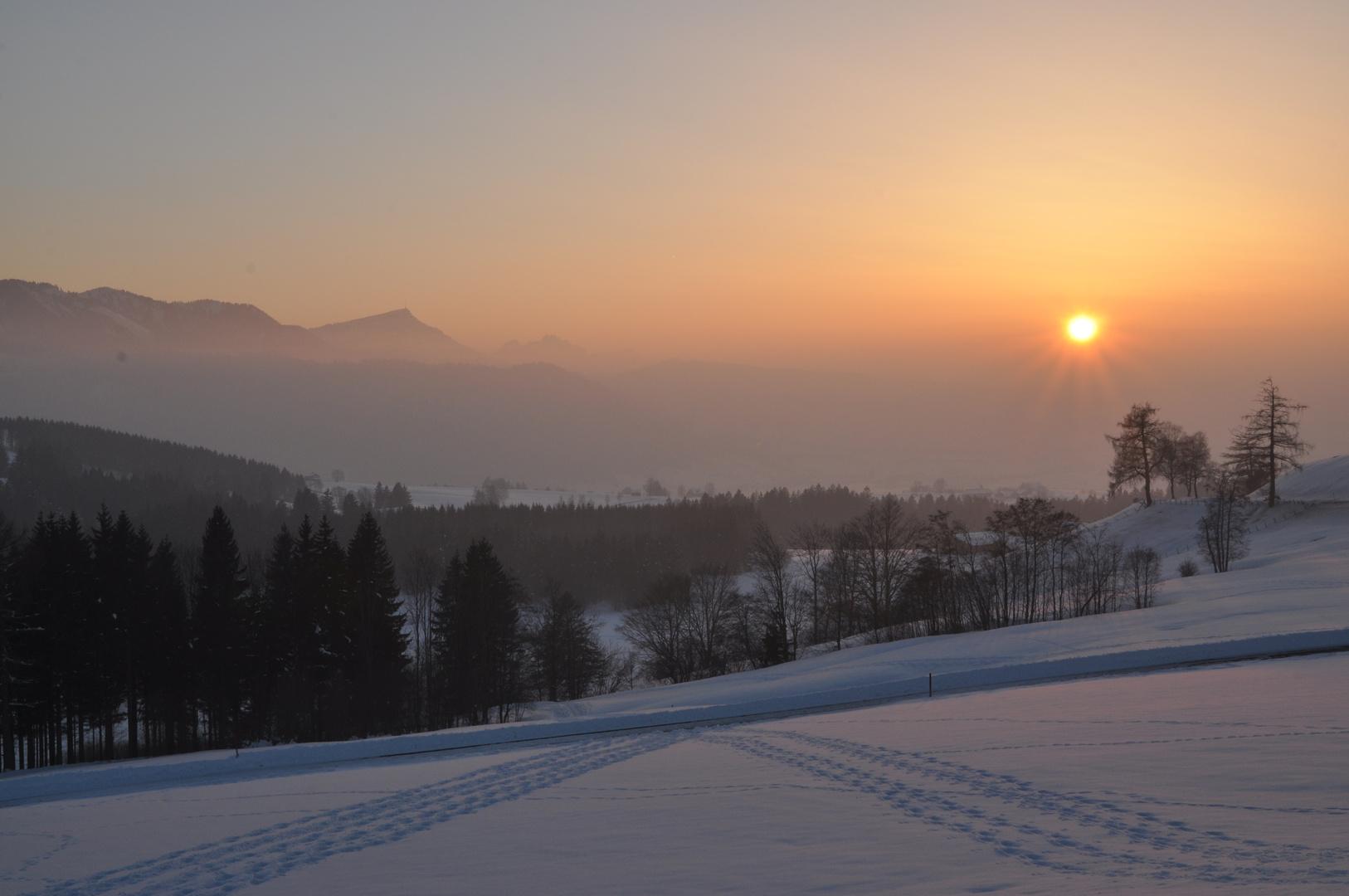 Das letzte Winterbild.