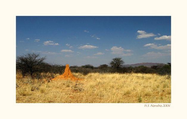 Das Licht Afrikas