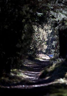 ... Das Licht am Ende des Tunnels ...