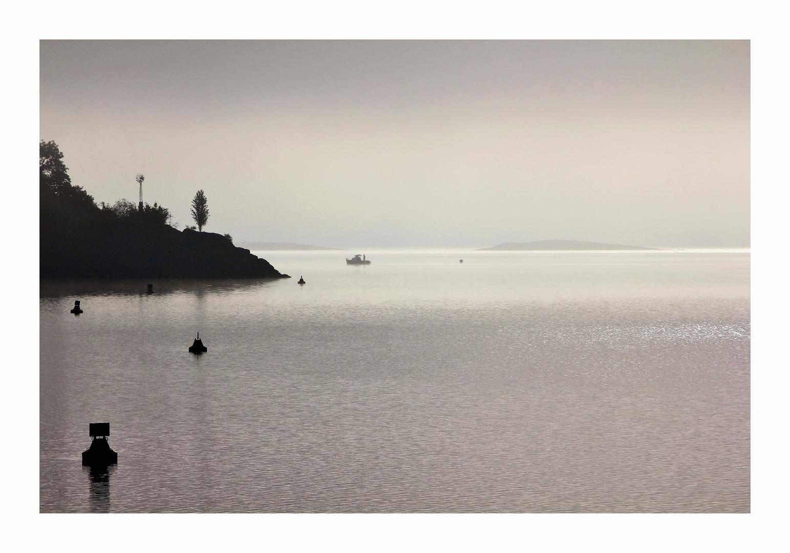 Das Licht am Nebelsee