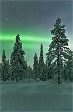 Das Licht des Nordens