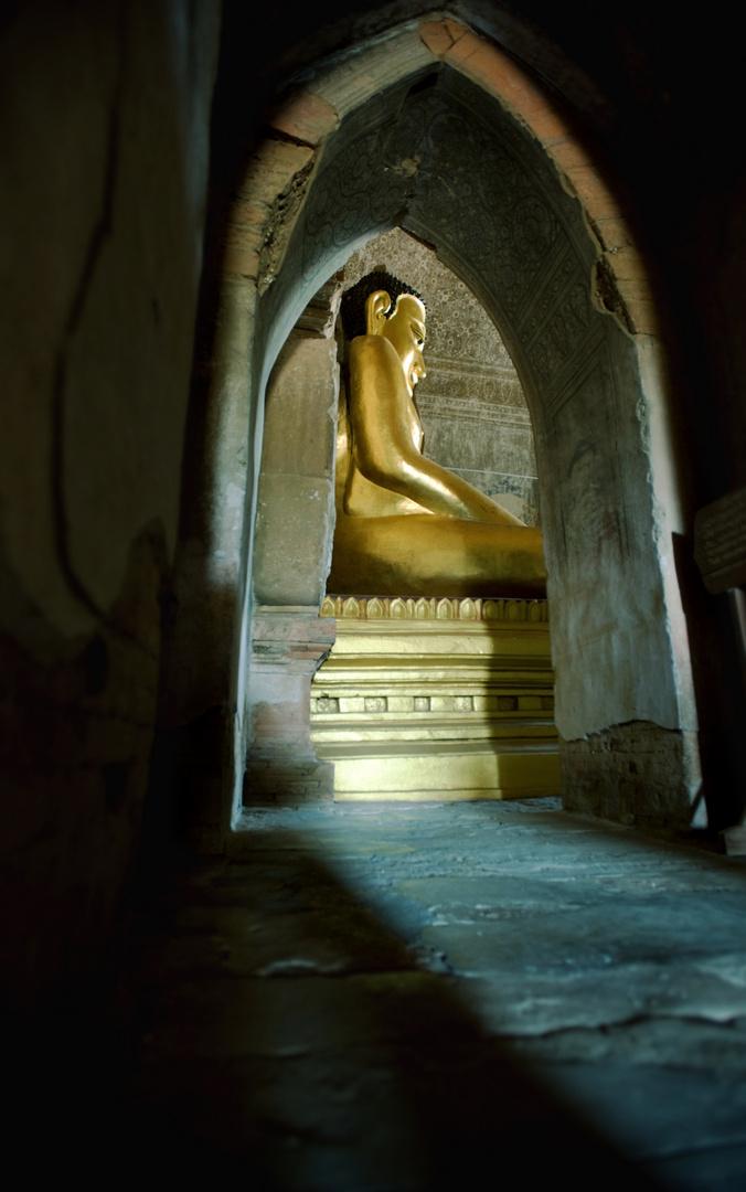 Das Licht führt zum Budda