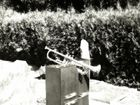 Das Lieblingsinstrument