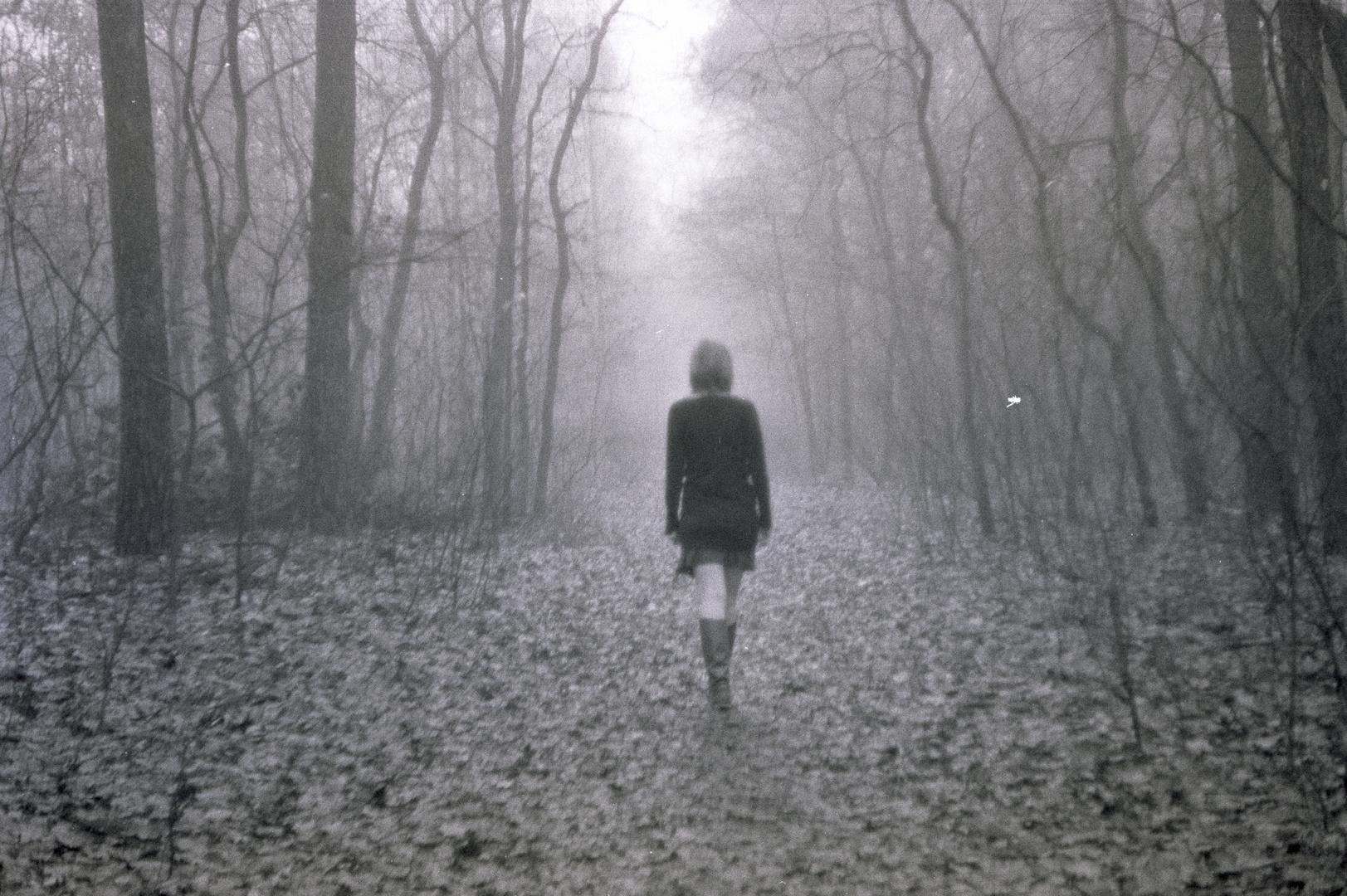 Das Mädchen aus dem Zauberwald...