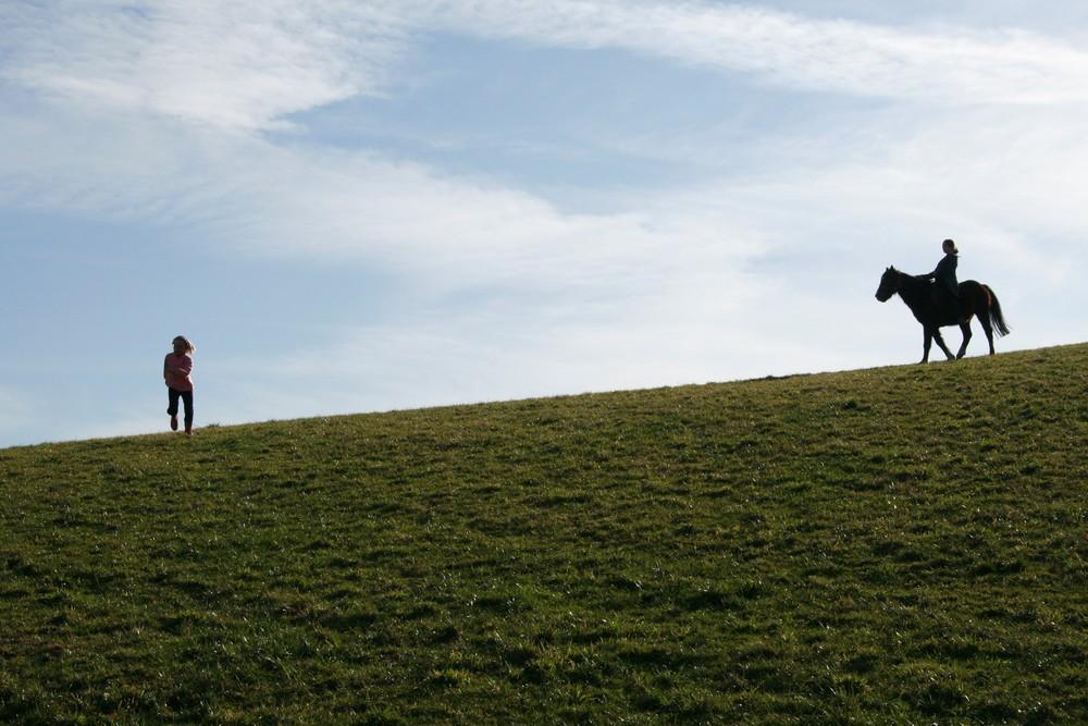 Das Mädchen und das Pferd