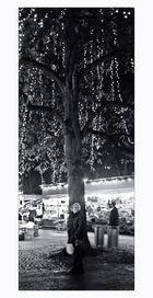 das mädchen unterm lichterbaum .