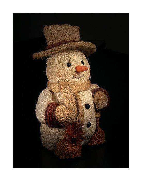 Das Märchen vom Schneemann