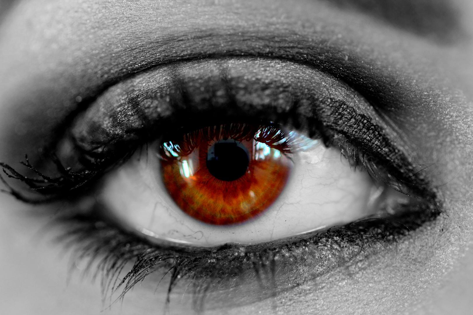 Das magische Auge