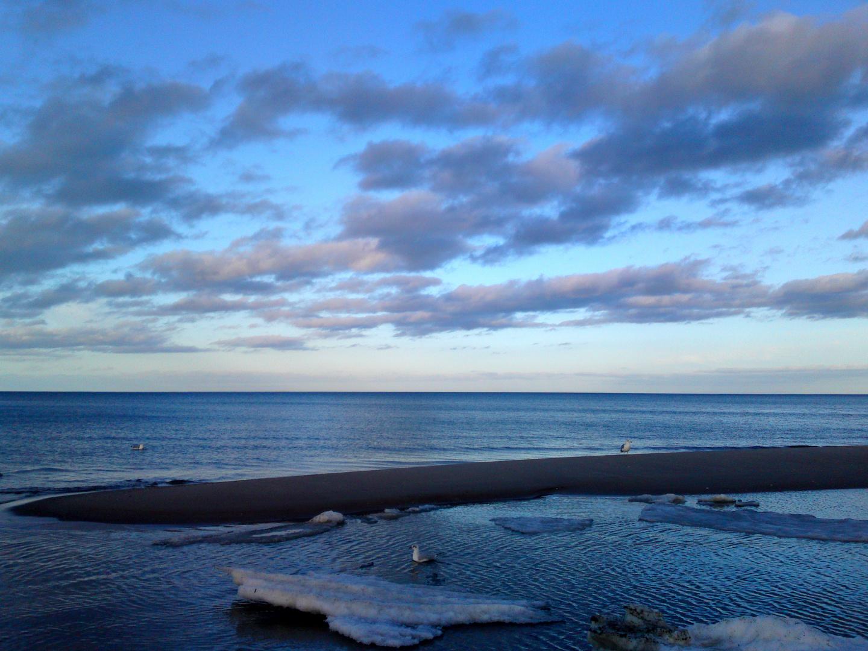Das Meer mit Möwe