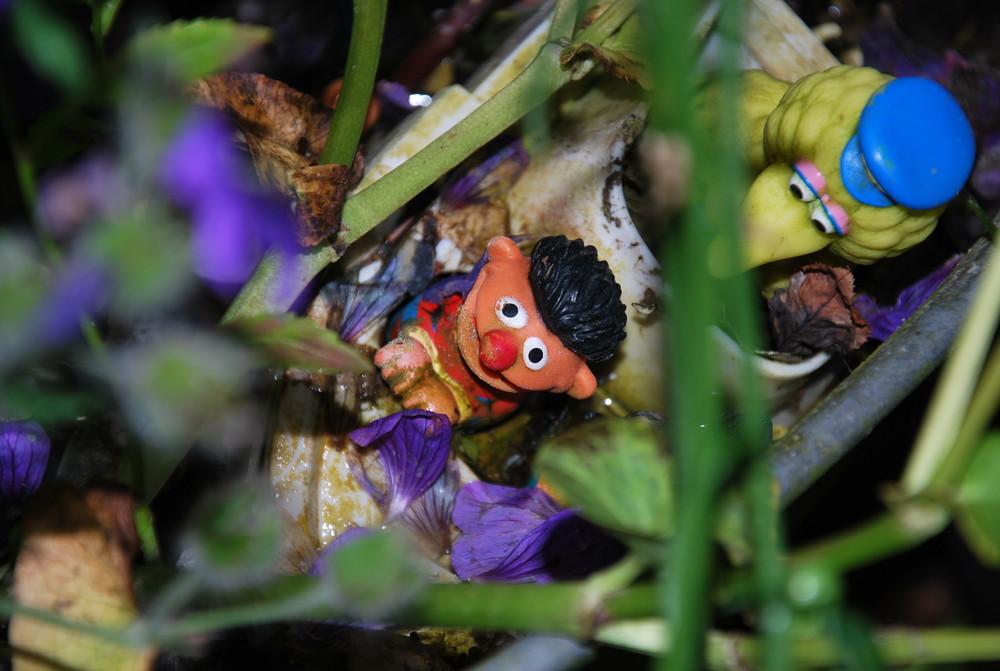 Das missglückte Abenteuer von Ernie und Bibo