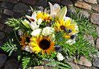 <<< Das Mittwochsblümchen >>>