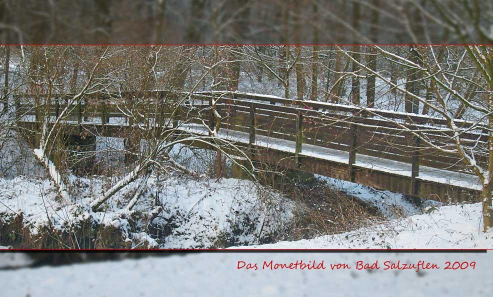 Das Monetbild im Winter