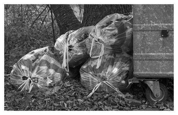 Das murrende Rascheln des Laubes im Herbst der Zivilisation