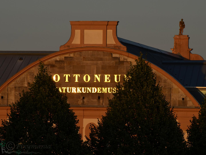 Das Naturkundemuseum Ottoneum in Kassel fängt die Sonne ein