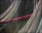 Das Netz des Fischers