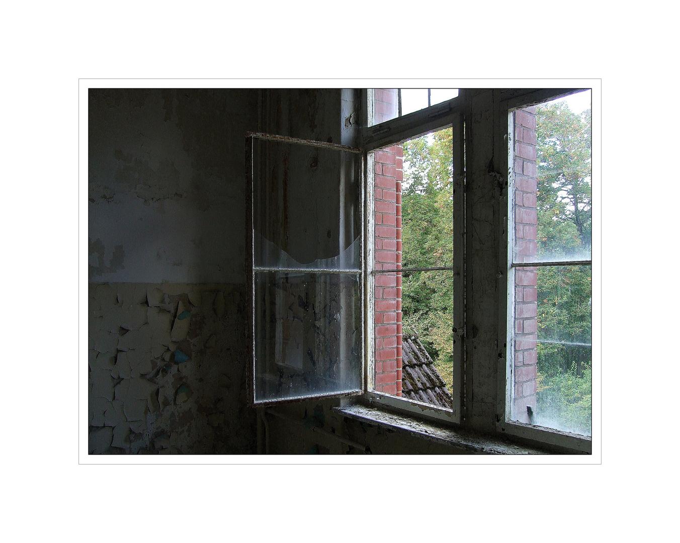 das offene Fenster