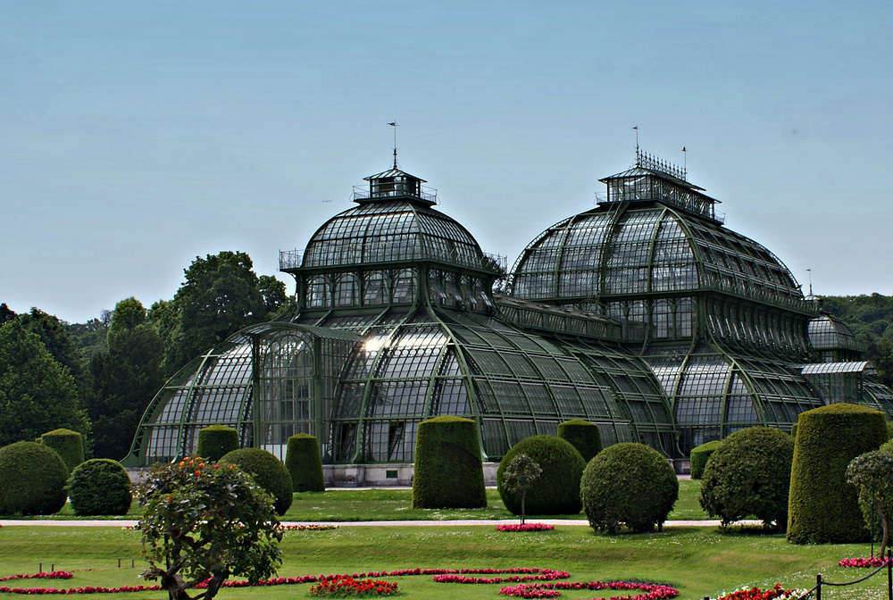 das palmenhaus in sch nbrunn foto bild architektur februar motive bilder auf fotocommunity. Black Bedroom Furniture Sets. Home Design Ideas