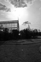 Das Palmenhaus von Göteborg