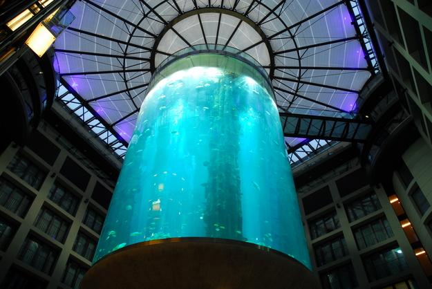 Das< perfekte° Aquarium ......................