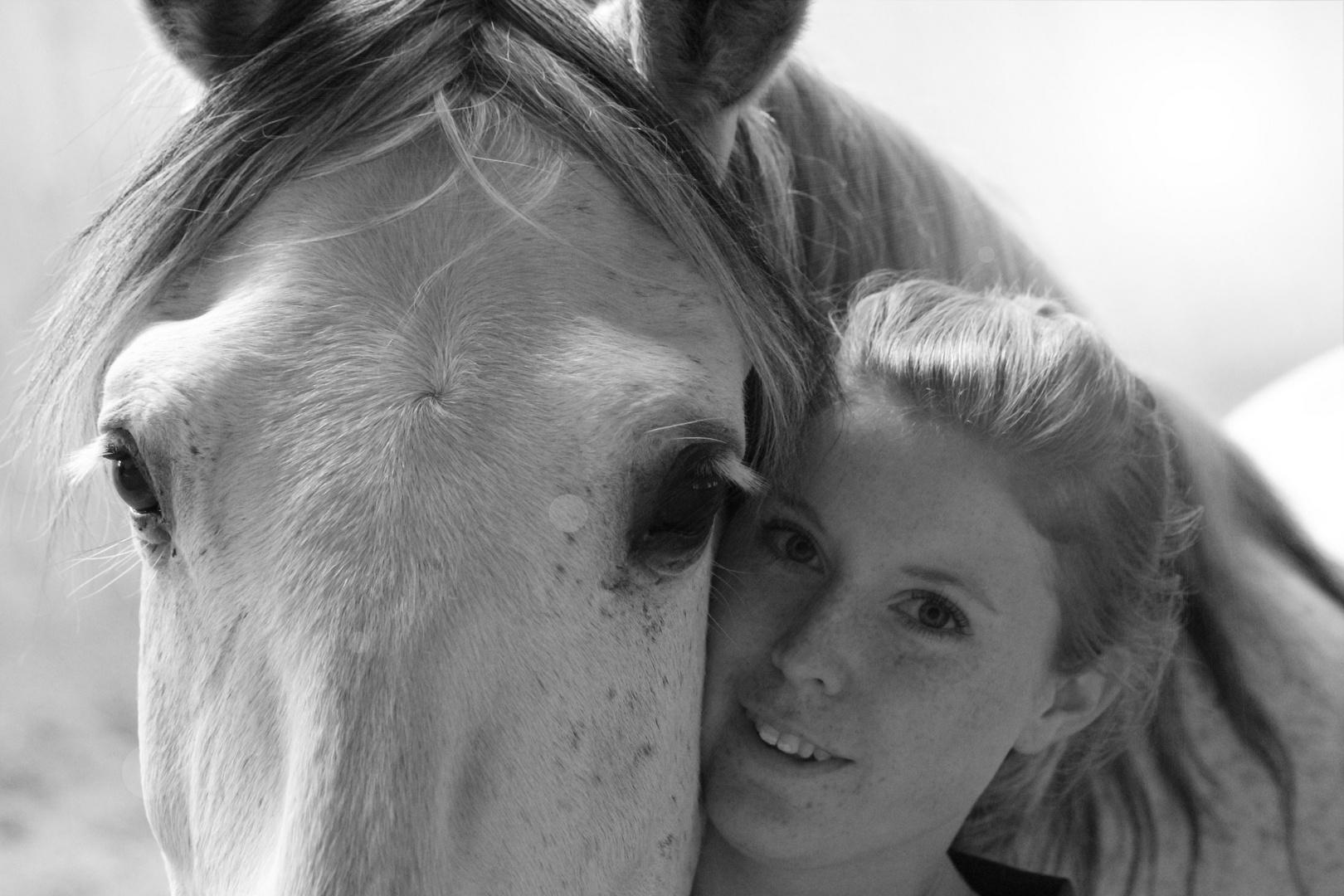 Das Pferd bleibt dir im Sturme treu -