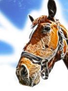 Das Pferd ohne den elektrischen Reiter