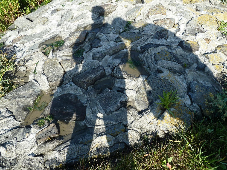 # Das Schattenpärchen #