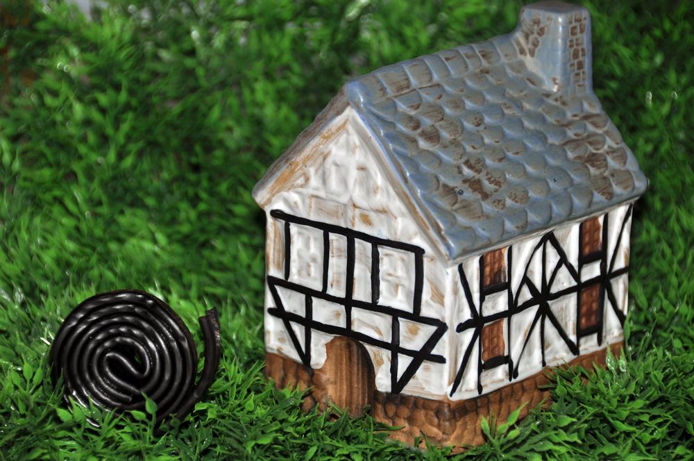 Das Schneckenhaus