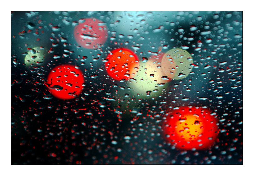 Das Schöne an Regenwetter II