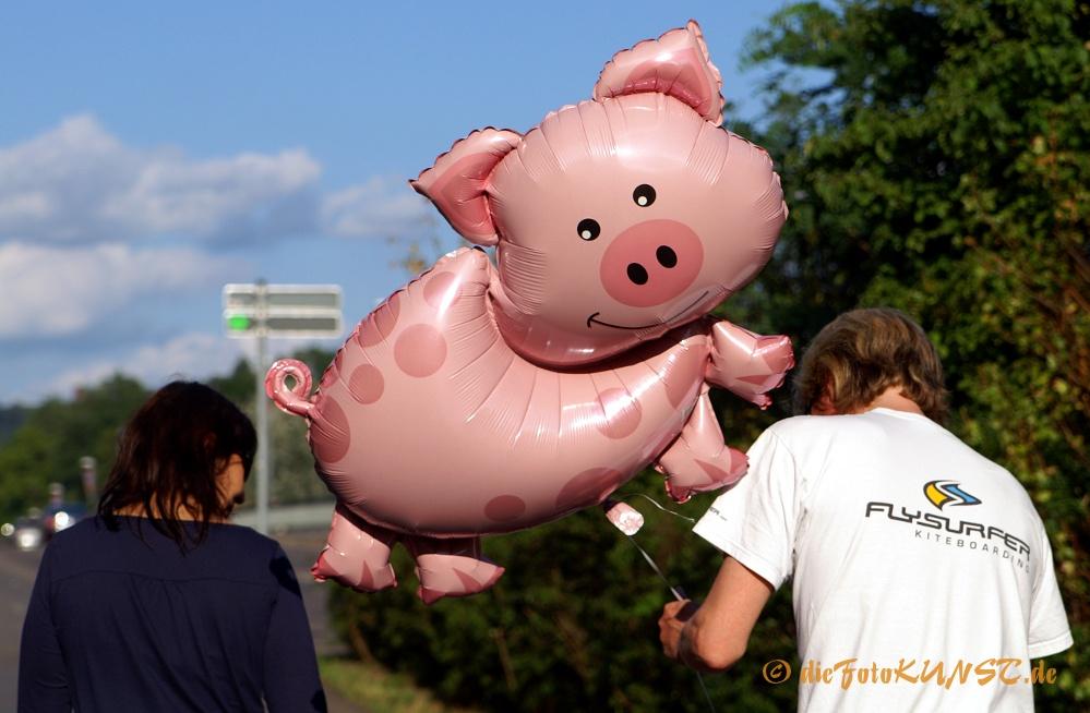 das Schweinerl haben wir aber jetzt