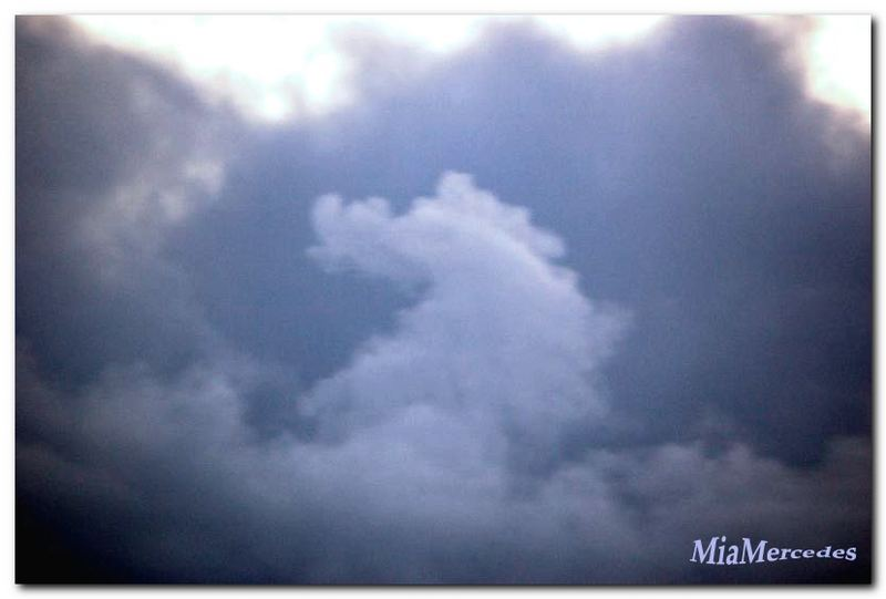Das Seepferd am Himmel