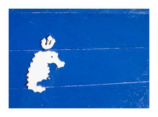 das Seepferdchen