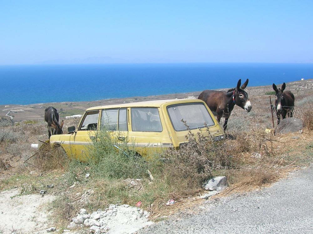 Das sichere Taxi wartet immer