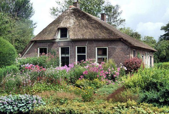 Das Strohdach und die Blumenwiese